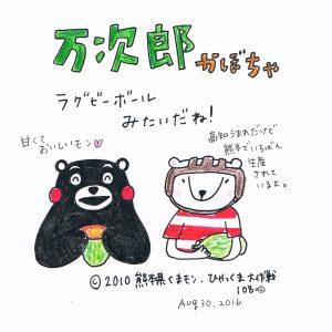 108 熊本原産万次郎かぼちゃ